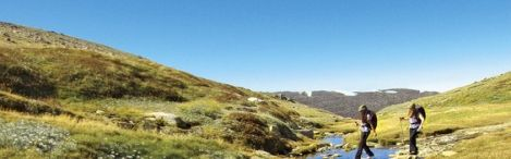 walking-in-kosciuszko-national-park